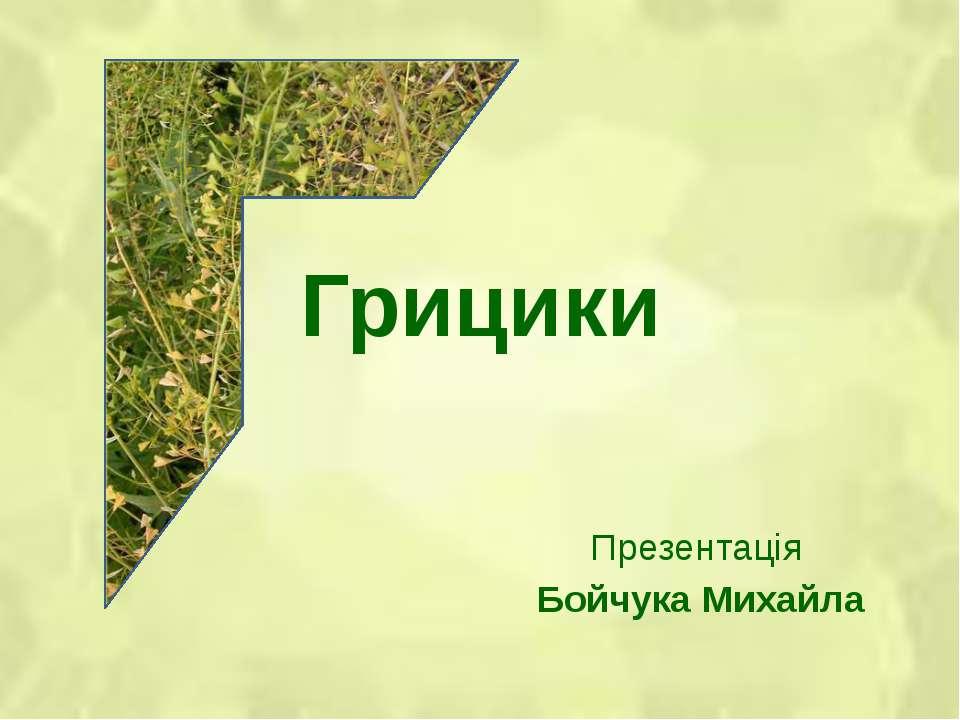 Грицики Презентація Бойчука Михайла