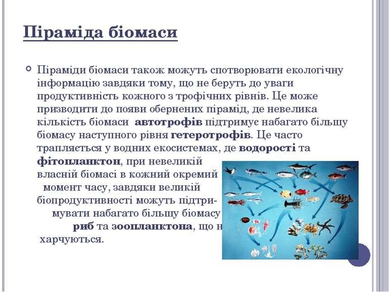 Піраміди біомаси також можуть спотворювати екологічну інформацію завдяки тому...