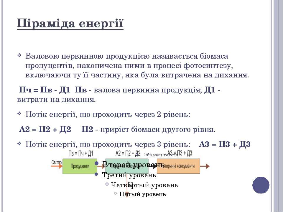 Піраміда енергії Валовою первинною продукцією називається біомаса продуцентів...