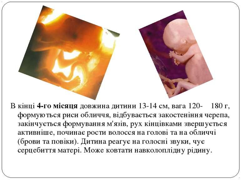 В кінці 4-го місяця довжина дитини 13-14 см, вага 120- 180 г, формуються риси...