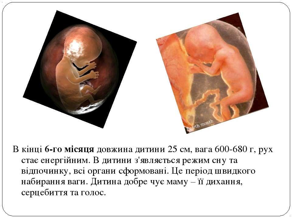 В кінці 6-го місяця довжина дитини 25 см, вага 600-680 г, рух стає енергійним...