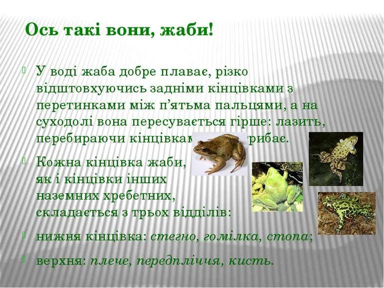 У воді жаба добре плаває, різко відштовхуючись задніми кінцівками з перетинка...