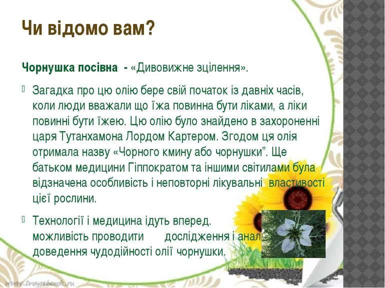 Чорнушка посівна - «Дивовижне зцілення». Загадка про цю олію бере свій почато...