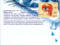 Допоміжний апарат ока – це брови, повіки з віями, слізні залози та м'язи ока....