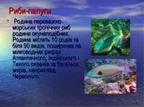 Риби-папуги Родина переважно морських тропічних риб родини окунеподібних. Род...