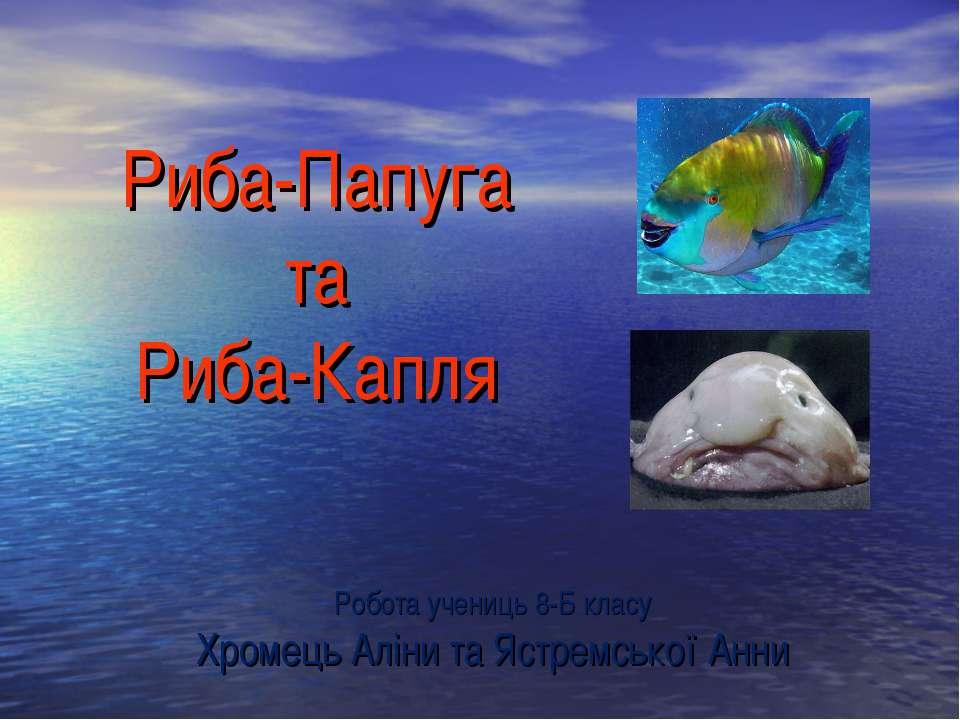 Риба-Папуга та Риба-Капля Робота учениць 8-Б класу Хромець Аліни та Ястремськ...