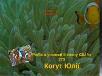Хто вона – ця риба-клоун? Робота учениці 8 класу СШ № 273 Когут Юлії