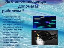 Як біолюмінесценція допомагає рибалкам ? Косяки риб іноді залишають по собі с...