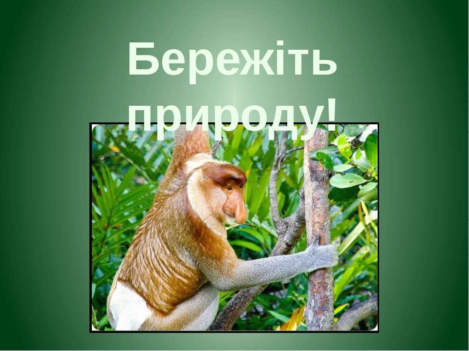 Бережіть природу!