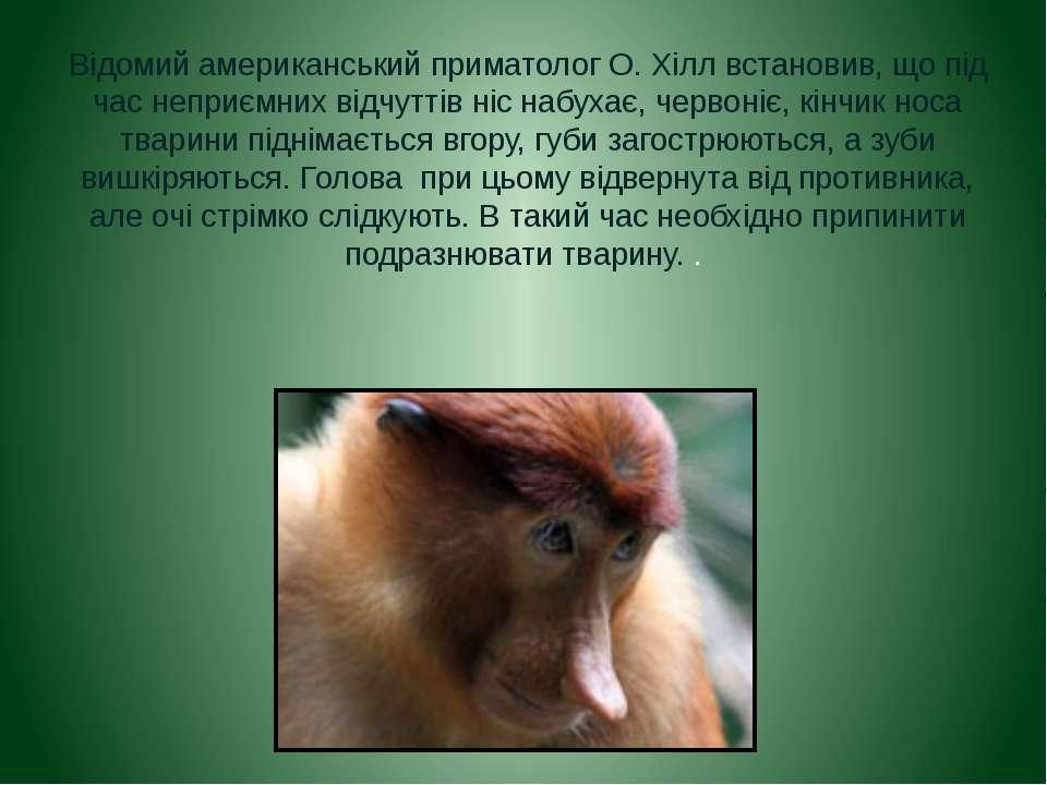 Відомий американський приматолог О. Хілл встановив, що під час неприємних від...