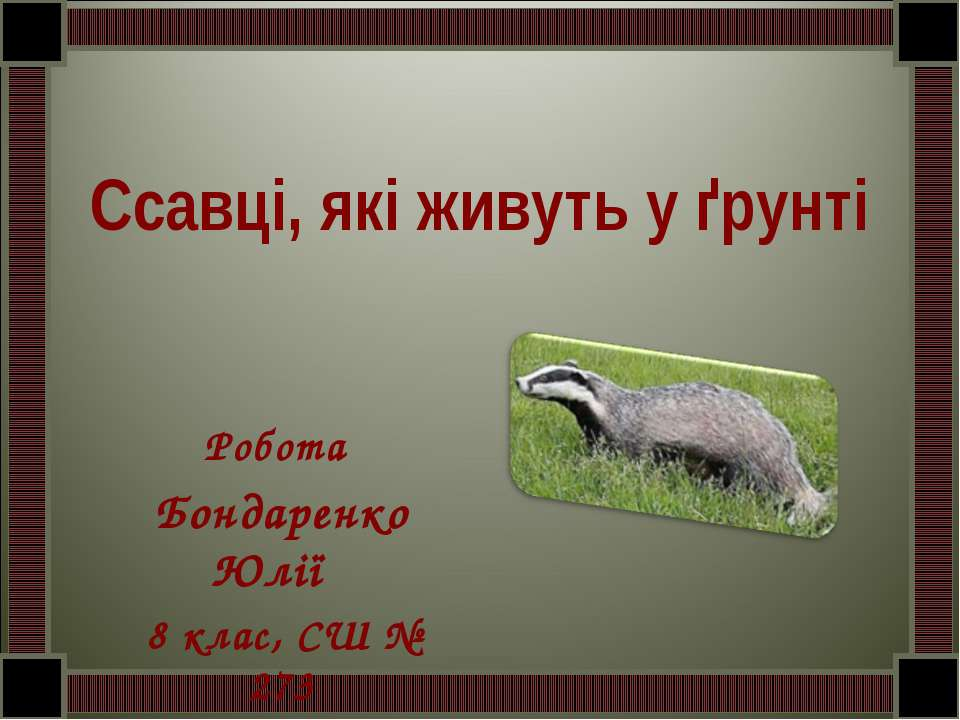 Ссавці, які живуть у ґрунті Робота Бондаренко Юлії 8 клас, СШ № 273