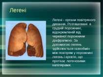 Легені Легені - органи повітряного дихання. Розташовані в грудній порожнині, ...