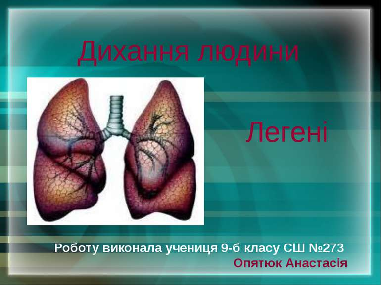 Дихання людини Роботу виконала учениця 9-б класу СШ №273 Опятюк Анастасія Легені