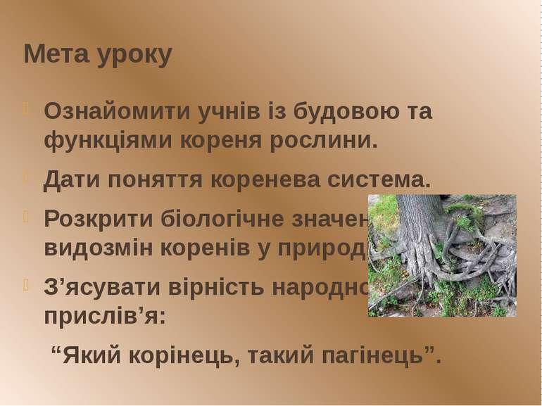 Мета уроку Ознайомити учнів із будовою та функціями кореня рослини. Дати поня...