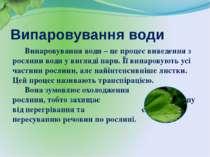 Випаровування води Випаровування води – це процес виведення з рослини води у ...