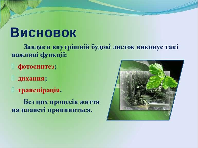 Висновок Завдяки внутрішній будові листок виконує такі важливі функції: фотос...