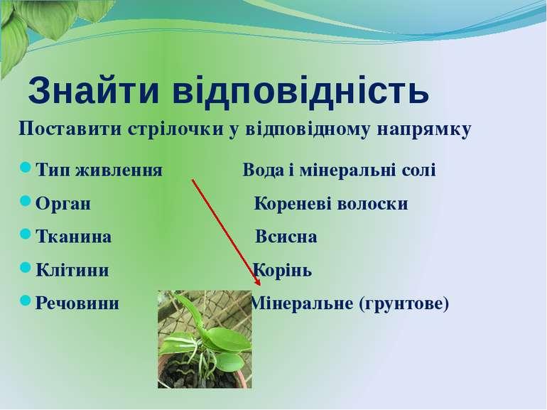 Тип живлення Вода і мінеральні солі Орган Кореневі волоски Тканина Всисна Клі...