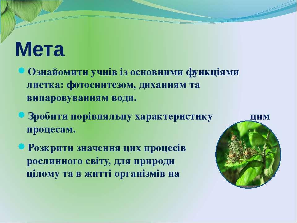 Мета Ознайомити учнів із основними функціями листка: фотосинтезом, диханням т...