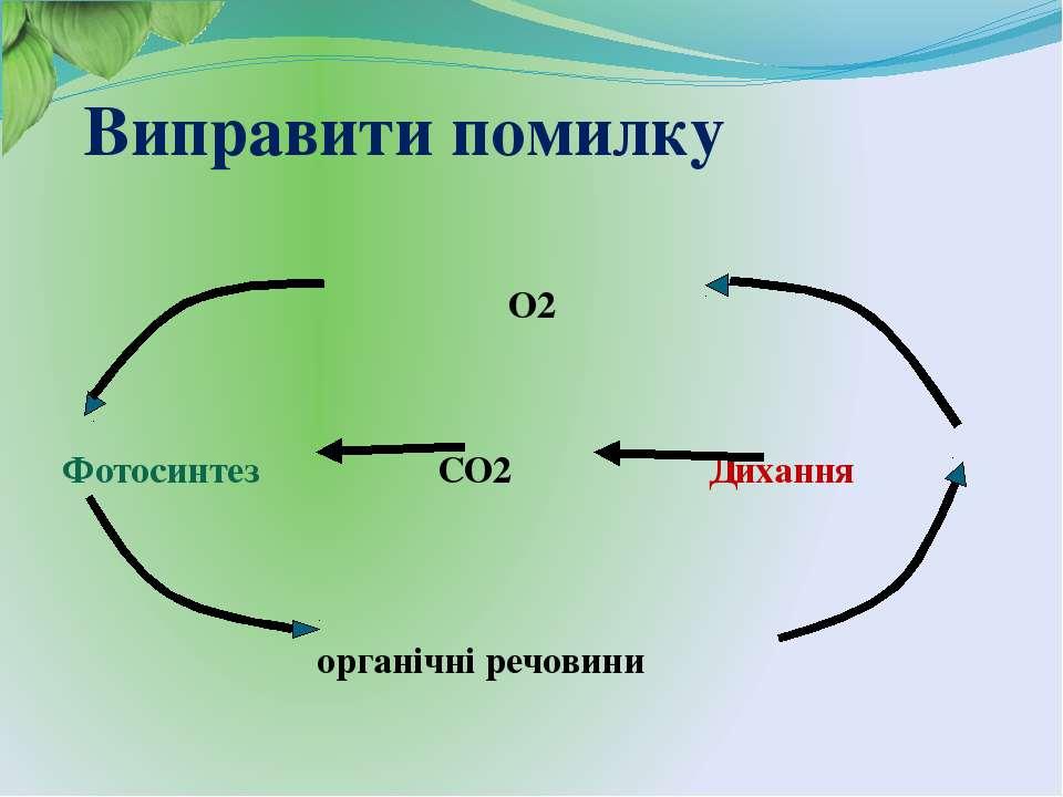 Виправити помилку О2 Фотосинтез СО2 Дихання органічні речовини