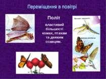 Переміщення в повітрі Політ властивий більшості комах, птахам та деяким ссавцям.