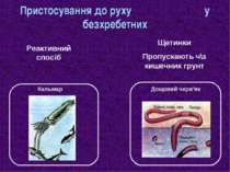 Пристосування до руху у безхребетних Дощовий черв'як Кальмар Реактивний спосі...