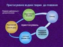 Пристосування водних тварин до плавання Реактивний спосіб руху Плавці Плавал...