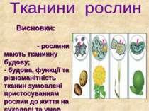 Висновки: - рослини мають тканинну будову; - будова, функції та різноманітніс...