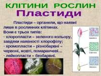 Пластиди – органели, що наявні лише в рослинних клітинах. Вони є трьох типів:...