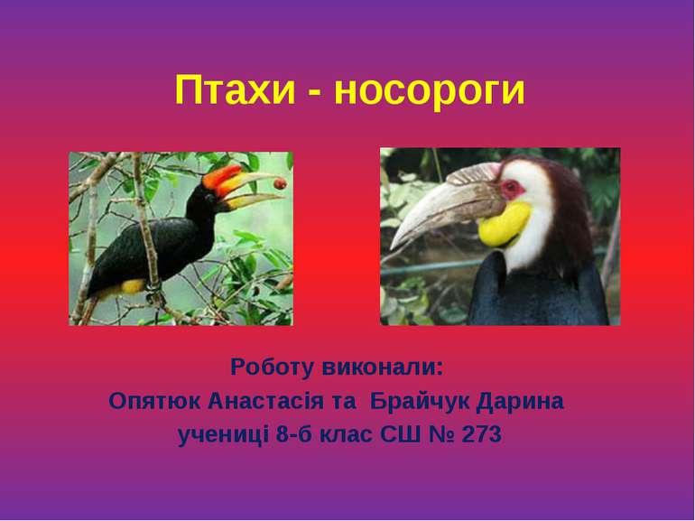 Птахи - носороги Роботу виконали: Опятюк Анастасія та Брайчук Дарина учениці ...