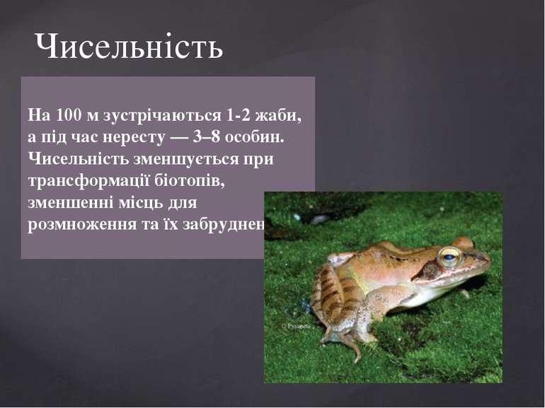 На 100 м зустрічаються 1-2 жаби, а під час нересту — 3–8 особин. Чисельність ...