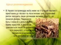 В Україні гостроморда жаба живе на її більшій частині і прив'язана до лісової...