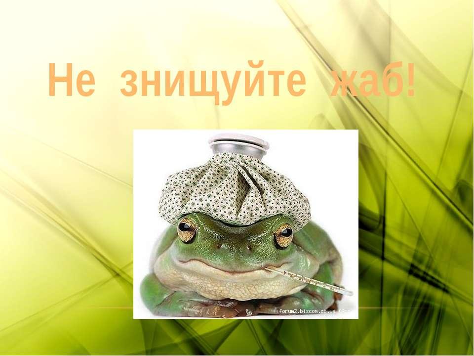Не знищуйте жаб!