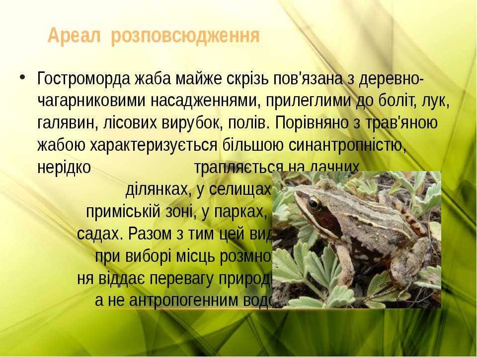 Гостроморда жаба майже скрізь пов'язана з деревно-чагарниковими насадженнями,...