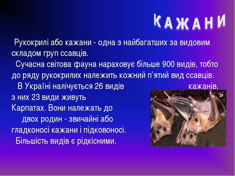 Рукокрилі або кажани - одна з найбагатших за видовим складом груп ссавців. Су...