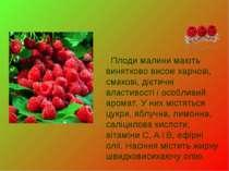 Плоди малини мають винятково високі харчові, смакові, дієтичні властивості і ...