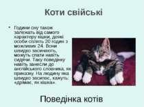 Години сну також залежать від самого характеру кішки, деякі особи сплять 20 г...