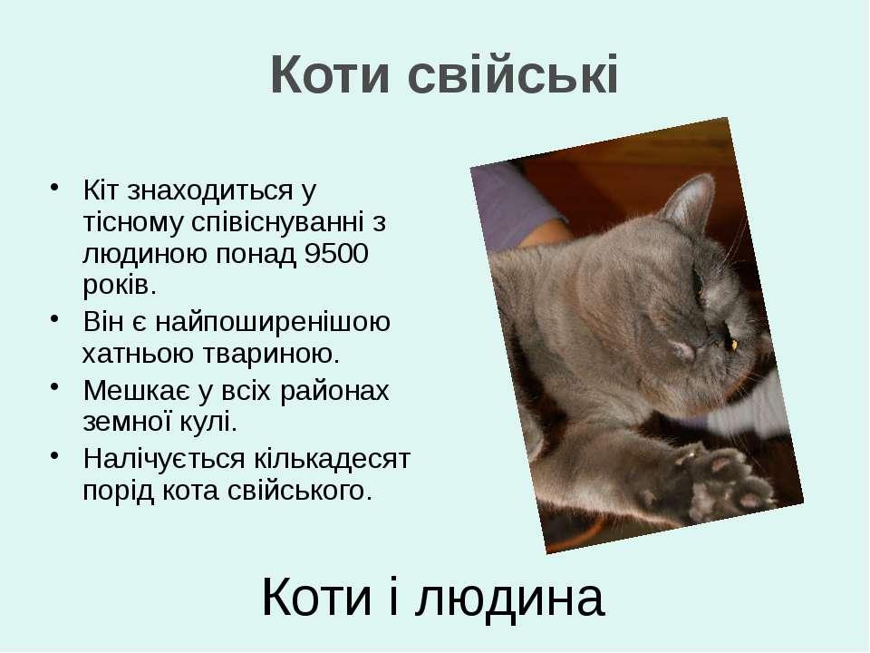 Кіт знаходиться у тісному співіснуванні з людиною понад 9500 років. Він є най...