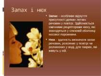 Запах і нюх Запах – особливе відчуття присутності деяких летких речовин у пов...
