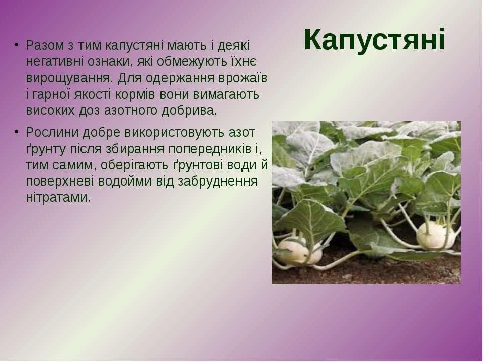 Разом з тим капустяні мають і деякі негативні ознаки, які обмежують їхнє виро...
