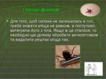 Для того, щоб голівка не залишилась в тілі, треба знімати кліща не ривком, а ...
