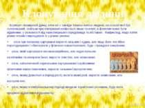 Всупереч поширеній думці, клон не є завжди точною копією людини, на основі як...