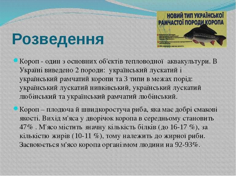 Розведення Короп - один з основних об'єктів тепловодної аквакультури. В Украї...