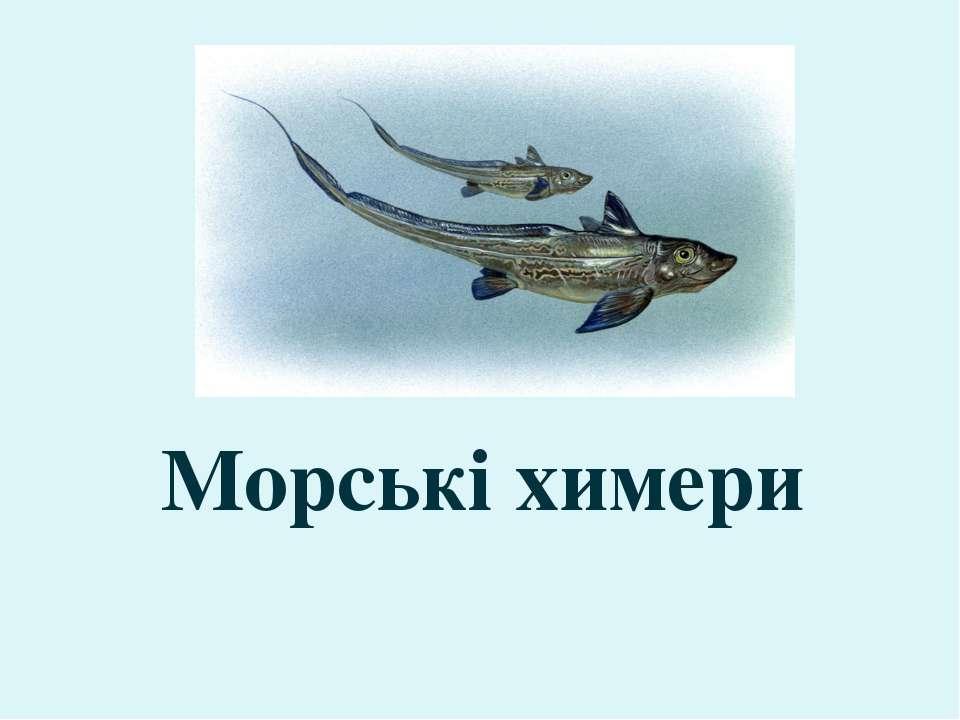 Морські химери