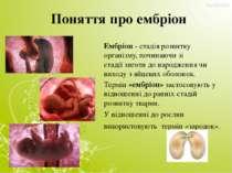 Поняття про ембріон Ембріон- стадія розвитку організму, починаючи зі стадії...