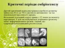 Критичні періоди ембріогенезу Другий критичний період внутрішньоутробного роз...
