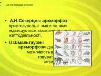 А.Н.Сєверцов: ароморфоз – пристосувальні зміни за яких підвищується загальна ...