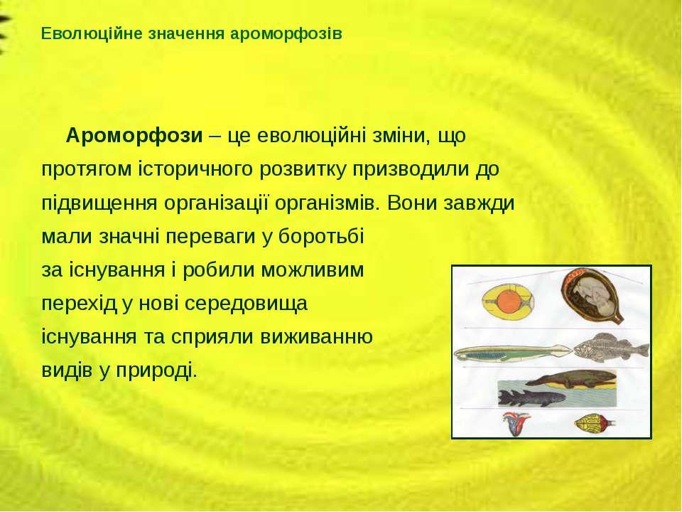 Ароморфози – це еволюційні зміни, що протягом історичного розвитку призводили...