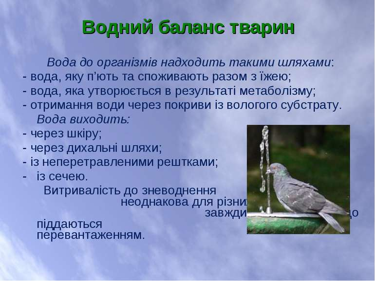 Вода до організмів надходить такими шляхами: - вода, яку п'ють та споживають ...
