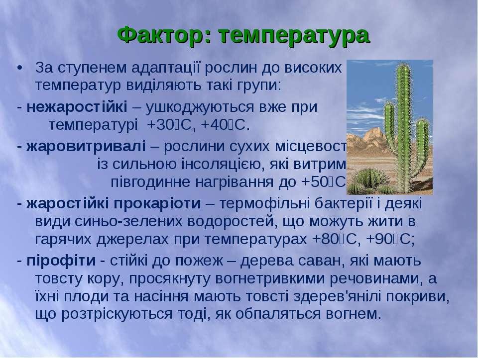 За ступенем адаптації рослин до високих температур виділяють такі групи: - не...