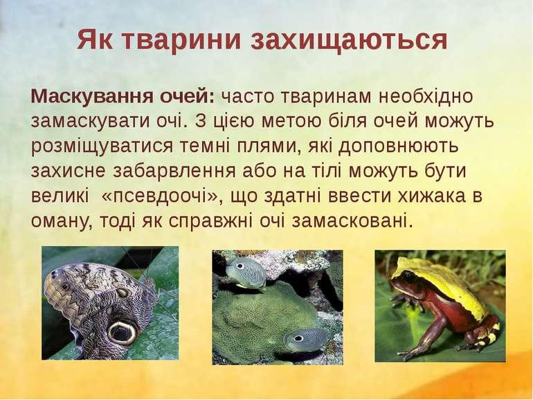 Маскування очей: часто тваринам необхідно замаскувати очі. З цією метою біля ...